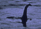 Could the fossil be an ancestor of Nessie?