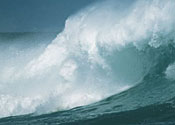 Coastal tide surge poses 'extreme danger'