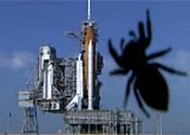 Space shuttle spider