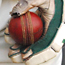 See England V New Zealand from an exclusive box at Lord's