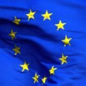 EU 'imposing too many UK laws'