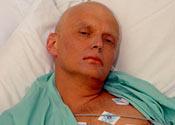Litvinenko suspect may run for mayor