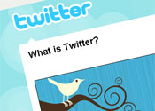 Sarah Brown overtakes Stephen Fry on Twitter rankings