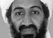 Terror suspect 'knew Osama Bin Laden contact'