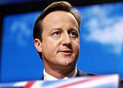 Promise: David Cameron
