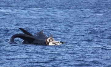 Anti-whaling boat Ady Gil sinks after being sliced in two by Japanese ship