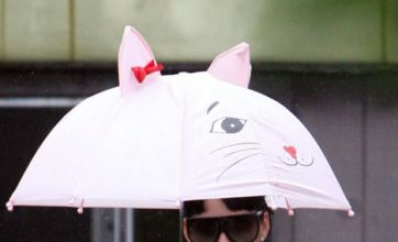 Who's hiding under this cute brolly?