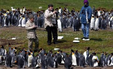 UK 'maintaining' Falklands defences