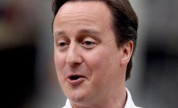 Cameron plans 'neighbourhood army'