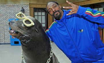 Snoop Dogg hangs out with his homie the sea lion