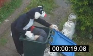 'Revenge of the cat' YouTube video spoofs Mary Bale 'cat in a bin' clip
