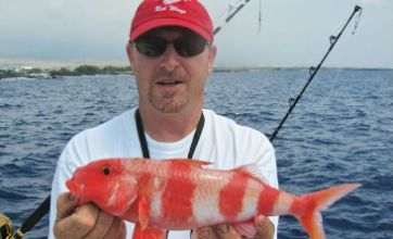 Angler becomes first to catch 1,000 species of fish ...