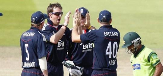 Swann celebrates a wicket (PA)