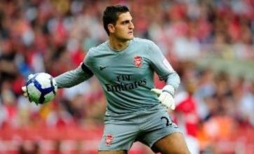 Vito Mannone tells Arsenal they do not need Mark Schwarzer