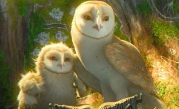 Legend Of The Guardians: The Owls Of Ga'Hoole is no movie for toddlers