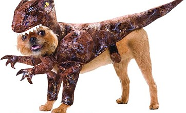 Dogs play dinosaur dress-ups with fancy prehistoric costumes