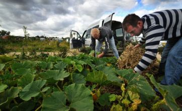 Tiny Lincolnshire community is living a green dream