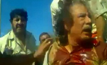Muammar Gaddafi may have been killed by one of his own guards