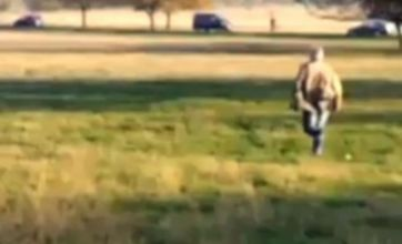 BENTON! Dog chases deer in Richmond Park, owner gets annoyed