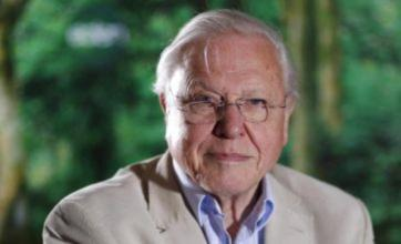 David Attenborough in climate call ahead of Frozen Planet final episode