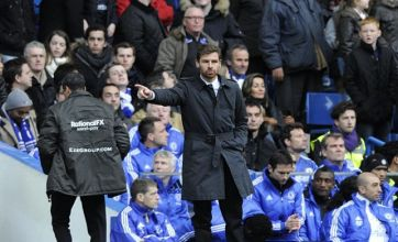 Andre Villas-Boas: European success not beyond Chelsea
