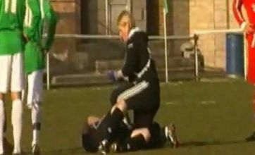 Ryman League match abandoned after referee is stung by bee and collapses