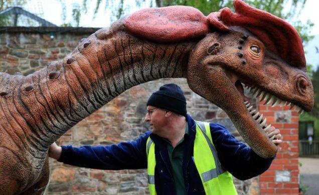 DinoZoo,  dilophosaurus