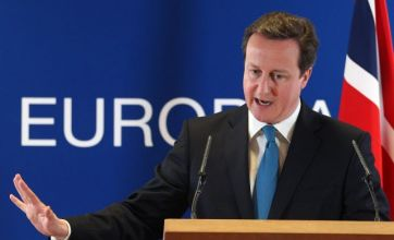David Cameron: Vote on the EU – but an opt out spells strife for Britain