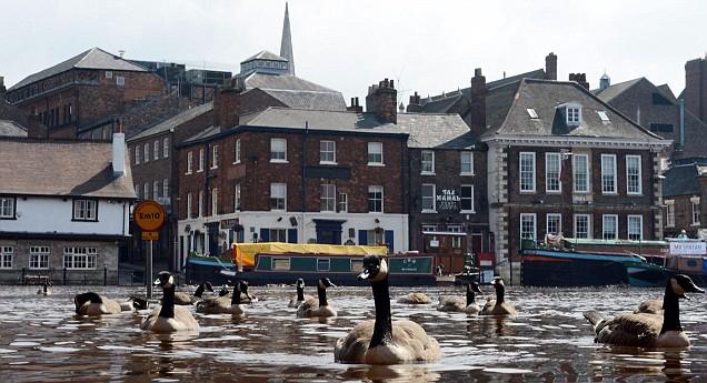 Weather flooding summer economy