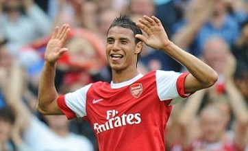 Tottenham rubbish rumours of signing Arsenal's Marouane Chamakh on loan