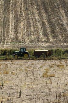 tractor, farm
