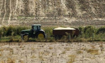 France: Farmer kills love rival with tractor after alleged affair