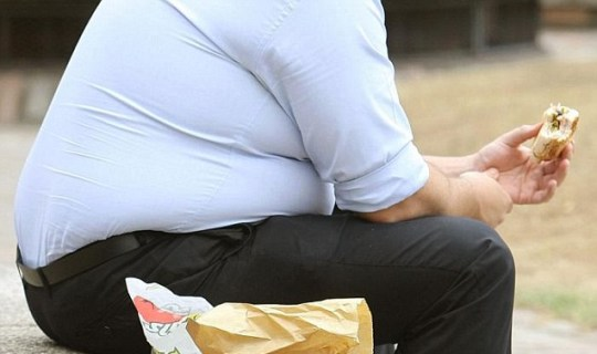 Rise in obesity, knee pain