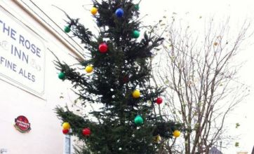 Britain's worst Christmas tree lights are a turn-off in Kent