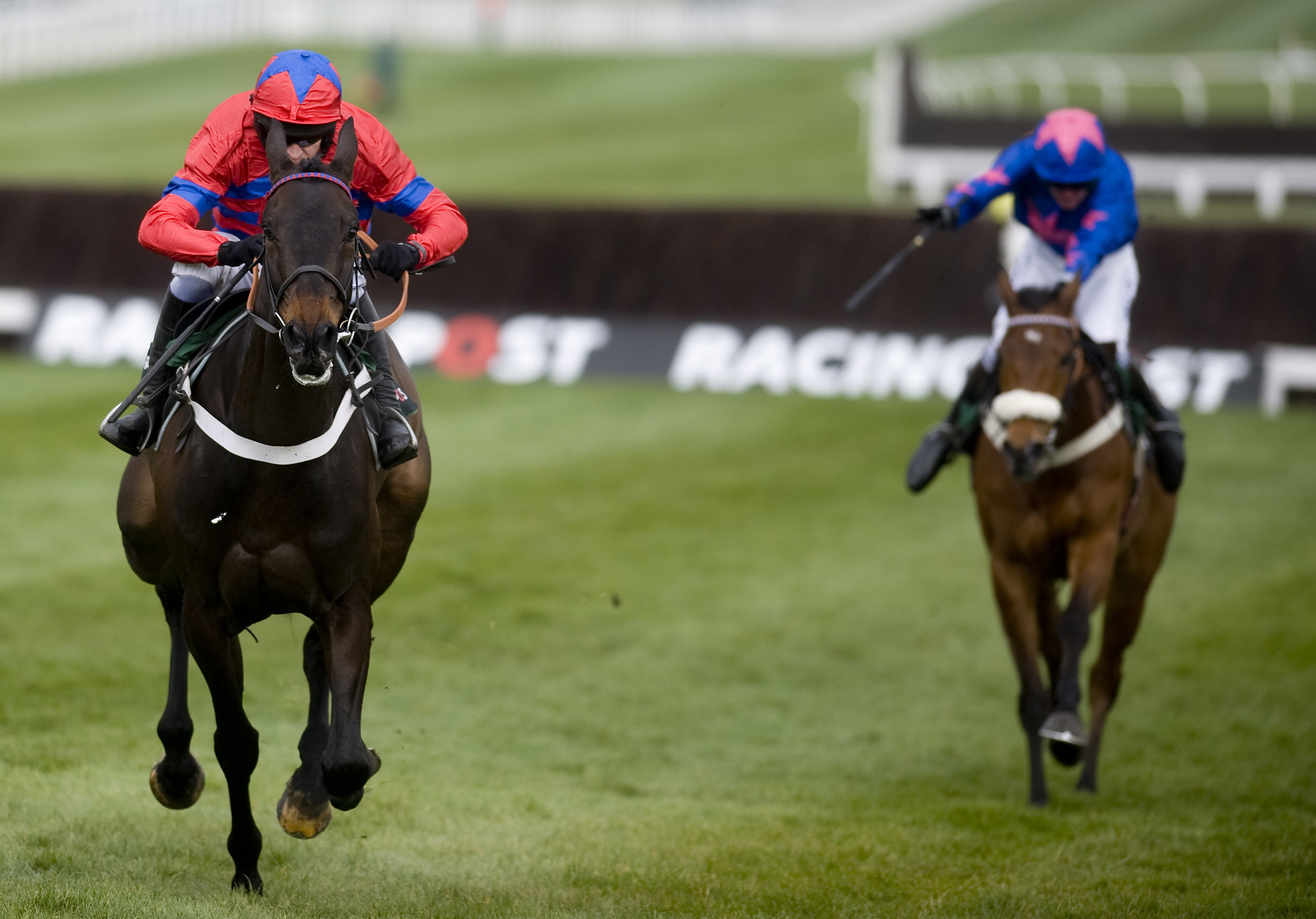 There will be no prestigious New Year's Day race meeting at Cheltenham this year (Picture: Getty)