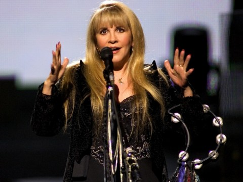 Stevie Nicks is joined by Christine McVie, Mick Fleetwood and Dave Stewart at the premiere of her new documentary.