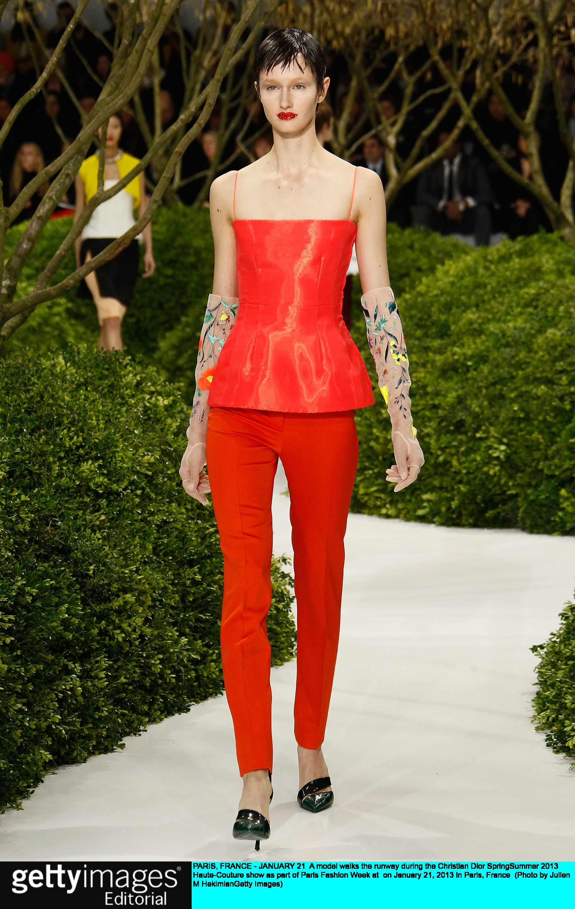baad2cb44e A model walks the runway during the Christian Dior Spring/Summer 2013  Haute-Couture