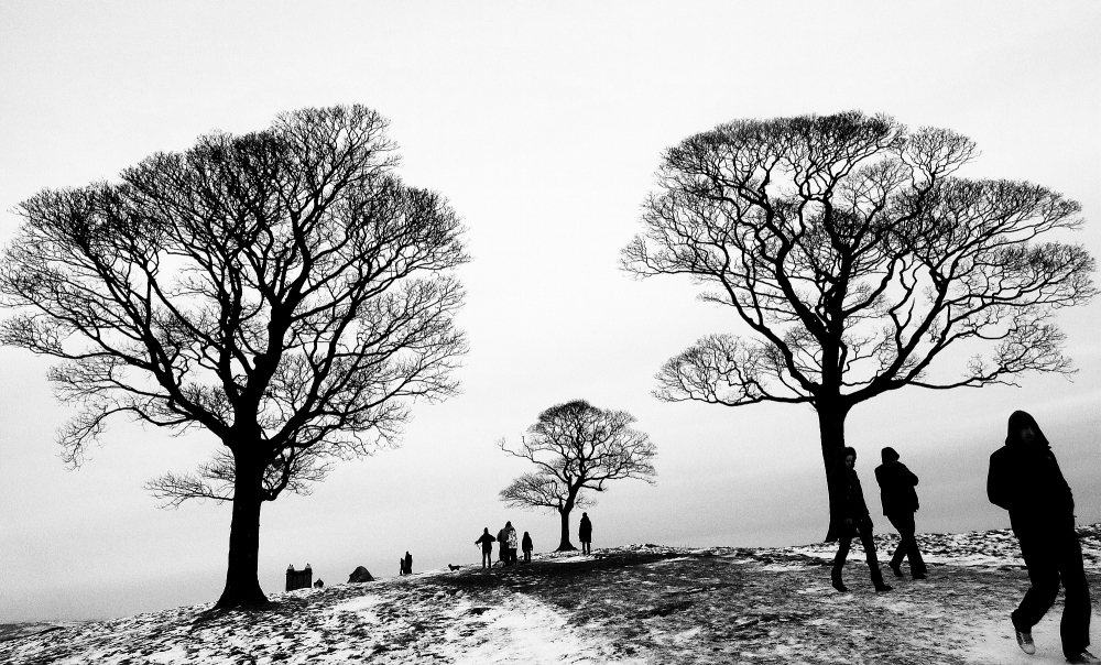 Gallery: National Trust Photo Competition 2013