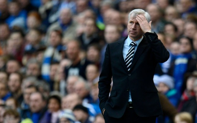 Under fire: Newcastle boss Alan Pardew has come under fire from supporters