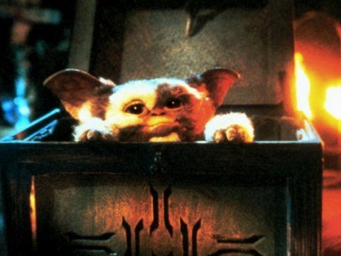 Horror comedy classic Gremlins tipped for reboot after talks with Spielberg