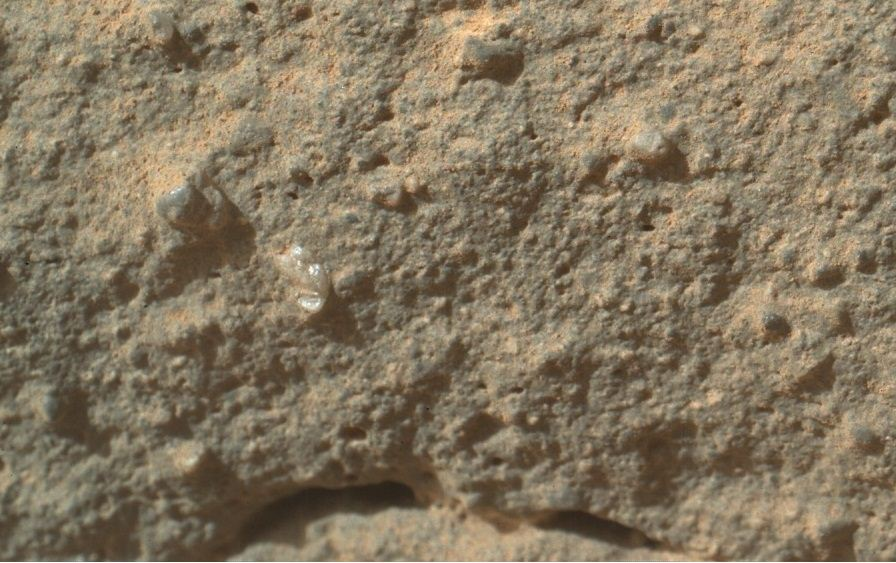 Life on Mars? Nasa's Curiosity rover 'Martian flower' pictures cause a stir