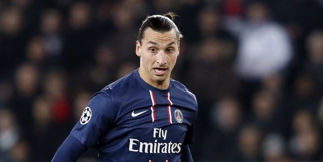 Challenged: Zlatan Ibrahimovic has work to do in order to get the domain name Zlatan.fr (Picture: Getty)