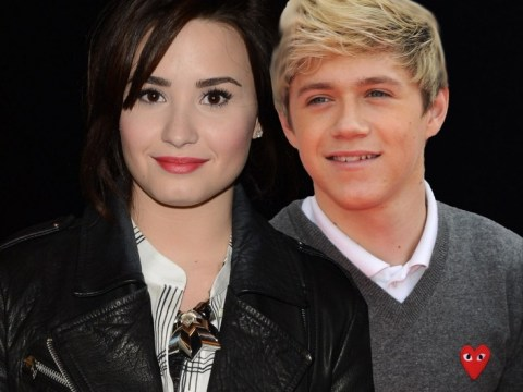 Has Niall Horan moved on already? Demi Lovato gushes over 'special' One Direction star