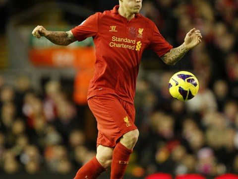 Martin Skrtel airs unhappiness with bench treatment under Brendan Rodgers