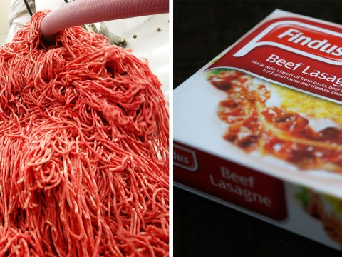 Horse meat scandal: Findus set to take legal action against suppliers