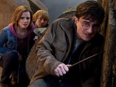 Harry Potter gets a Christian makeover from woman who doesn't want her kids to 'become witches'. Crikey