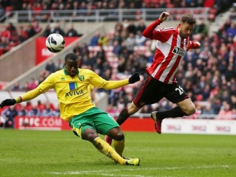 Gallery: Sunderland v Norwich City – 17 March 2013