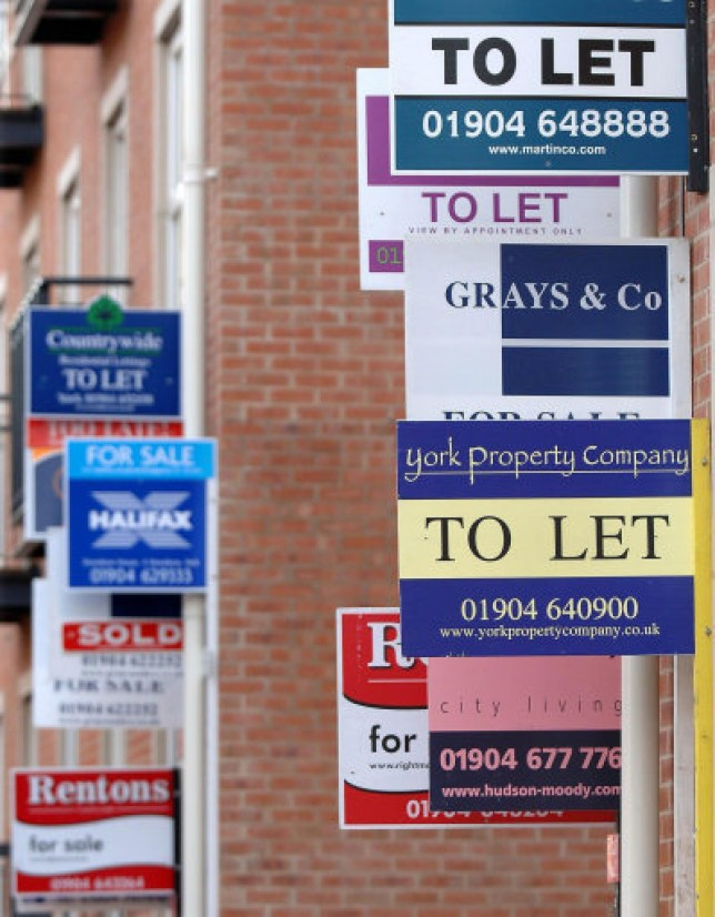 rent, to-let signs
