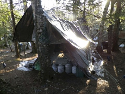 Hermit who lived in woods for 27 years arrested for burglary