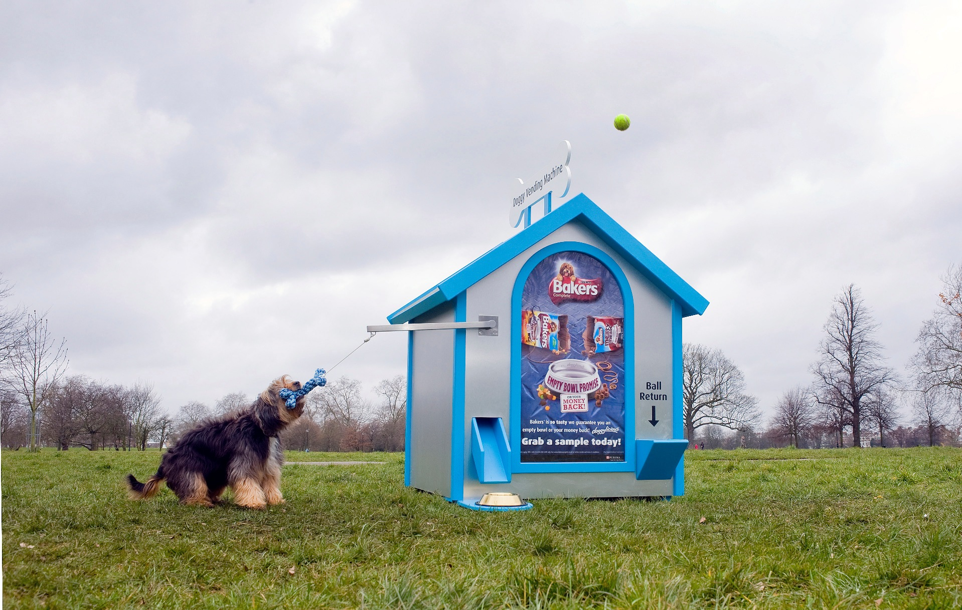 Bakers doggy vending machine arrives on Clapham Common